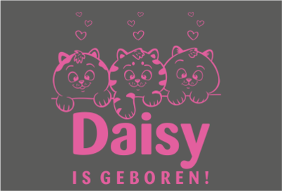Geboorte sticker kittens roze
